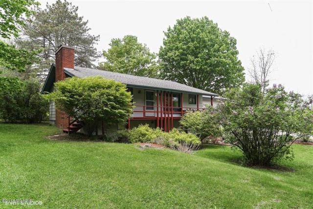 19536 S Martin Road, Three Oaks, MI 49128 (MLS #18023965) :: 42 North Realty Group