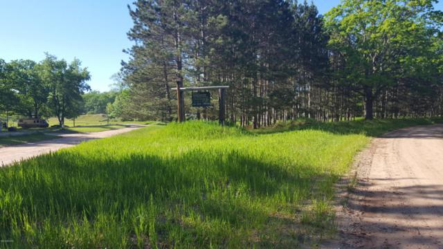 E Sippy Road, Custer, MI 49405 (MLS #18024404) :: Carlson Realtors & Development