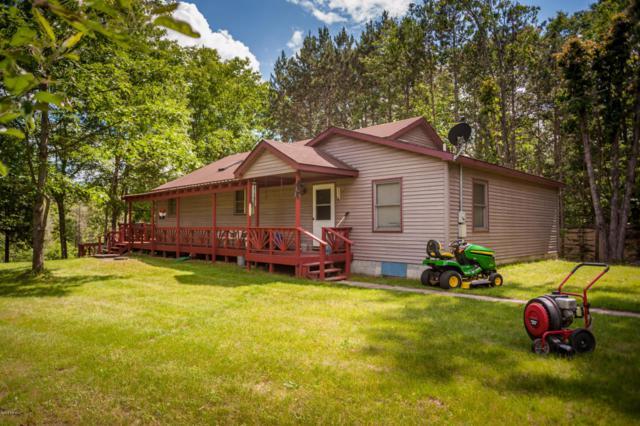 3732 Indian Trail Drive, Hersey, MI 49639 (MLS #18024929) :: Carlson Realtors & Development