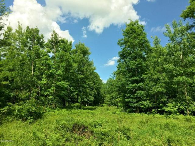 0 State Road, Chase, MI 49623 (MLS #18027676) :: 42 North Realty Group