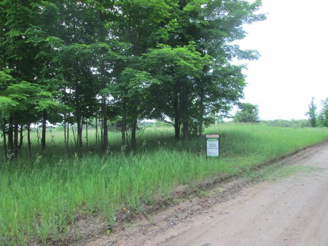 0 Moss Road, Beulah, MI 49617 (MLS #18027917) :: Deb Stevenson Group - Greenridge Realty