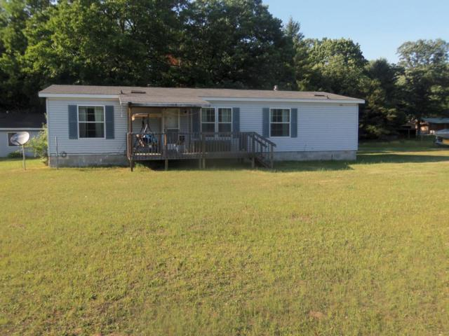 6674 E 48th Street, Chase, MI 49623 (MLS #18030668) :: 42 North Realty Group