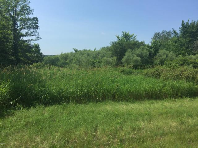 Parcel C White Oak Road, Lawton, MI 49065 (MLS #18030675) :: Matt Mulder Home Selling Team