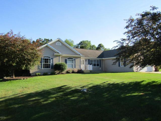 142 Meadowlark Drive, Ionia, MI 48846 (MLS #18031082) :: Carlson Realtors & Development