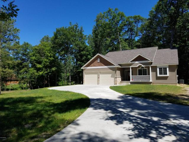 2045 101st Avenue, Otsego, MI 49078 (MLS #18031161) :: Matt Mulder Home Selling Team