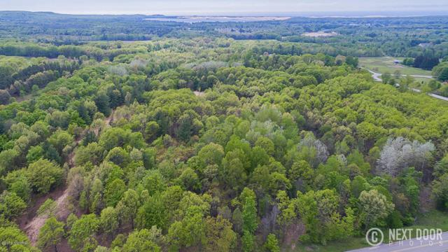 Lot K Wilson, Mears, MI 49436 (MLS #18031298) :: Deb Stevenson Group - Greenridge Realty