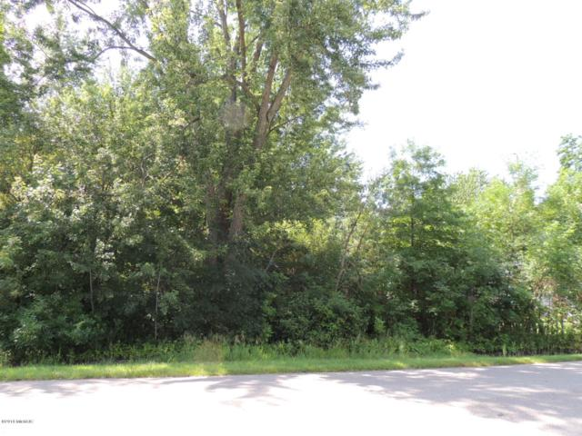 Lot # 8 Third Street, Fennville, MI 49408 (MLS #18031515) :: CENTURY 21 C. Howard