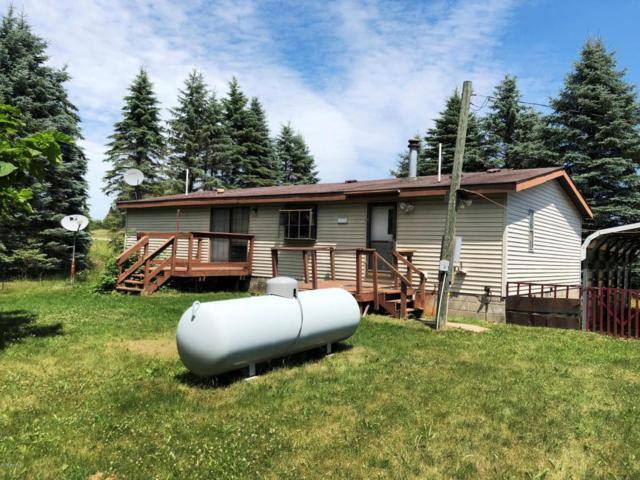 9483 210th Avenue, Reed City, MI 49677 (MLS #18032062) :: 42 North Realty Group