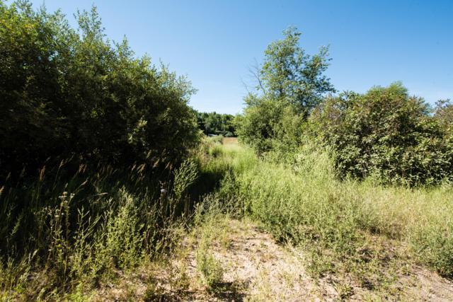 4616 Cutler Road NE, Edmore, MI 48829 (MLS #18032458) :: Carlson Realtors & Development