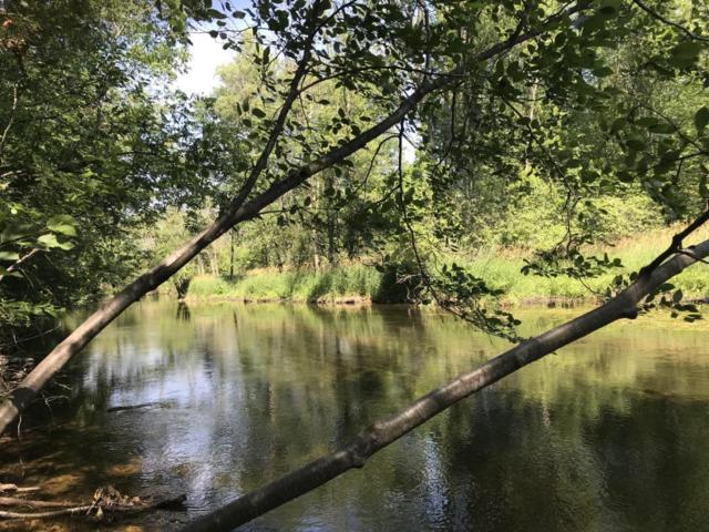 4356 W Lake Montcalm Road NW, Six Lakes, MI 48886 (MLS #18032576) :: Carlson Realtors & Development