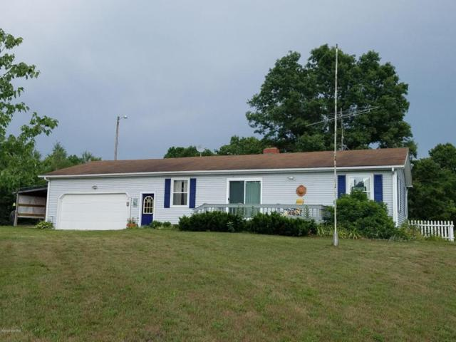 10652 N Beech Ave., Paris, MI 49338 (MLS #18035134) :: Carlson Realtors & Development