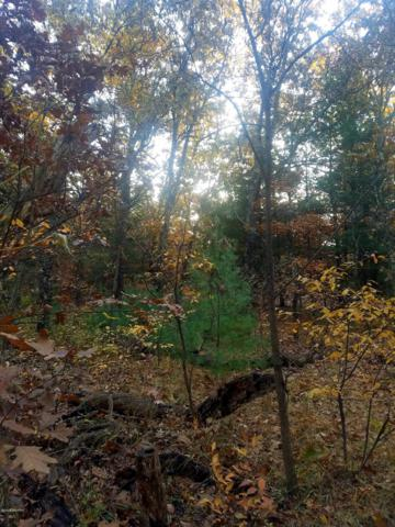 Lot 10 E 28th Street, White Cloud, MI 49349 (MLS #18035828) :: Deb Stevenson Group - Greenridge Realty