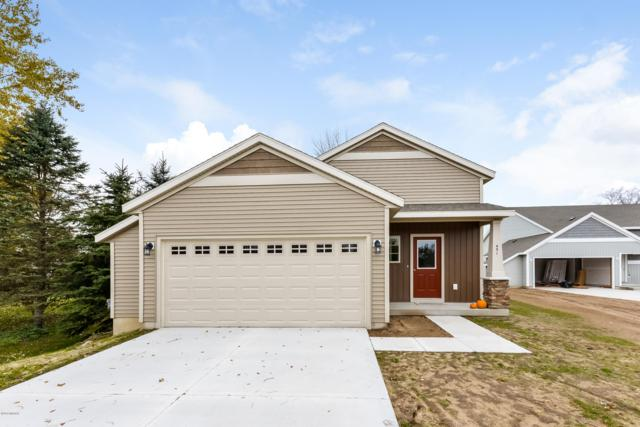 0 98th, Howard City, MI 49329 (MLS #18036442) :: Matt Mulder Home Selling Team