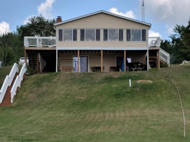 9935 Highland Drive, Perrinton, MI 48871 (MLS #18036720) :: Deb Stevenson Group - Greenridge Realty