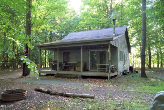 7708 Miles Road, Six Lakes, MI 48886 (MLS #18038049) :: Deb Stevenson Group - Greenridge Realty