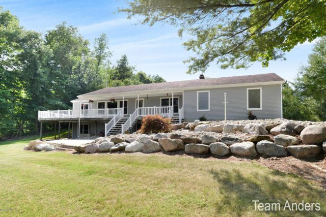6451 Ivan Trail, Middleville, MI 49333 (MLS #18038505) :: JH Realty Partners