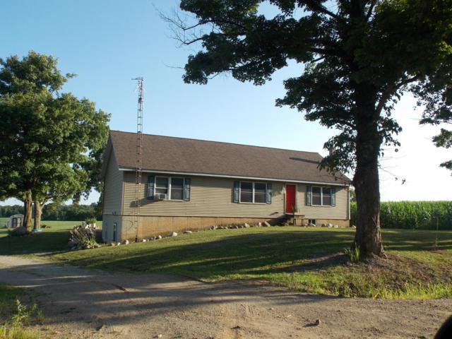 6791 Tamarack Road, Osseo, MI 49266 (MLS #18038534) :: JH Realty Partners