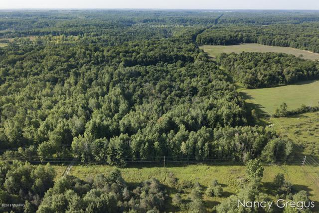 V/L 013 S Vandenbosch, Newaygo, MI 49337 (MLS #18039231) :: JH Realty Partners