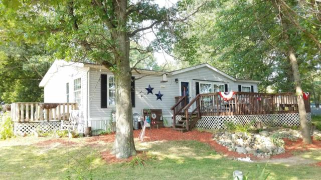 9405 E Bluewater Hwy Highway, Pewamo, MI 48873 (MLS #18039873) :: JH Realty Partners