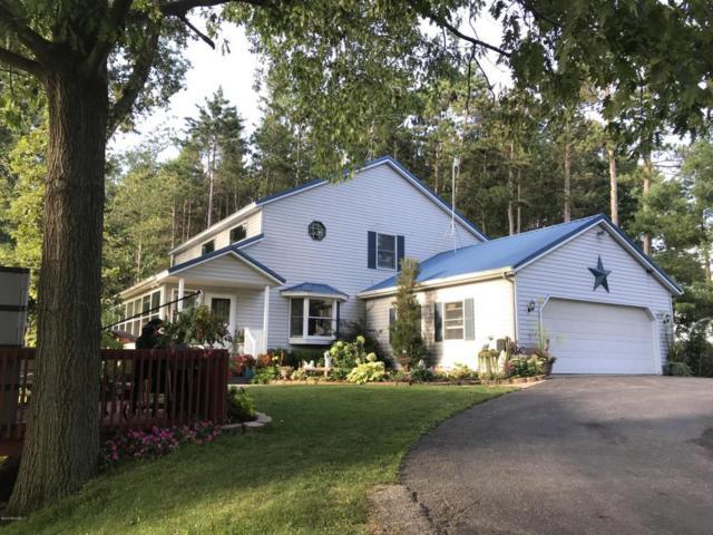 5727 N Miles Road, Stanton, MI 48888 (MLS #18040611) :: Carlson Realtors & Development