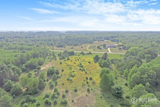 N Custer Road 80 Acres, Custer, MI 49405 (MLS #18040704) :: Carlson Realtors & Development