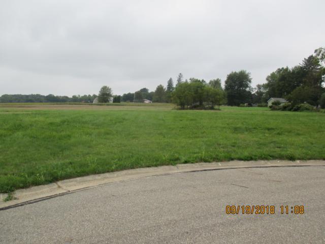 65 Bluebird Court, Quincy, MI 49082 (MLS #18041897) :: Deb Stevenson Group - Greenridge Realty