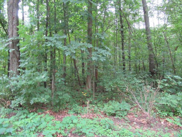 Tract #9 Walnut Road, Dowagiac, MI 49047 (MLS #18042471) :: Carlson Realtors & Development