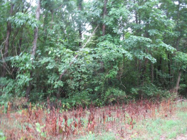 Track #12 Lakeview Drive, Dowagiac, MI 49047 (MLS #18042559) :: Carlson Realtors & Development