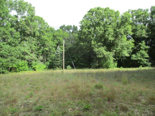 12726 Heintzelman Road NE, Cedar Springs, MI 49319 (MLS #18042563) :: Carlson Realtors & Development