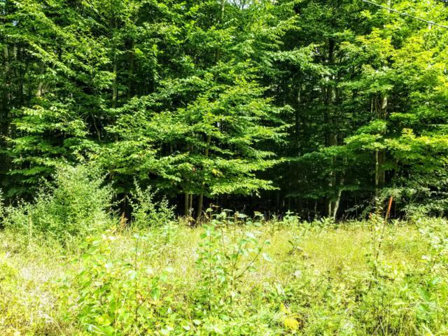 Lot 39 Shawnee Trail, Kewadin, MI 49648 (MLS #18042658) :: JH Realty Partners