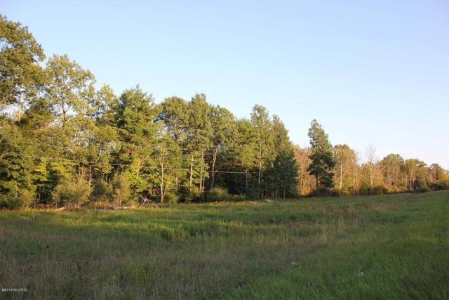 A N Sheridan Road, Stanton, MI 48888 (MLS #18044596) :: Deb Stevenson Group - Greenridge Realty