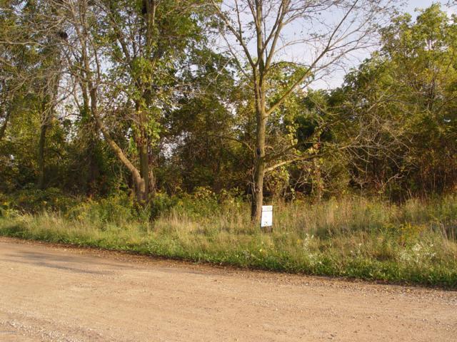 2959 Bonanza Road, Lake Odessa, MI 48849 (MLS #18044681) :: Deb Stevenson Group - Greenridge Realty