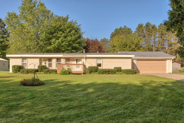 8138 Liberty Lane Lane, Cadillac, MI 49601 (MLS #18044870) :: Carlson Realtors & Development