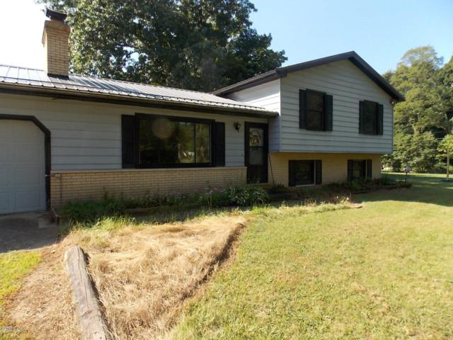 69671 S River Road, White Pigeon, MI 49099 (MLS #18045897) :: JH Realty Partners