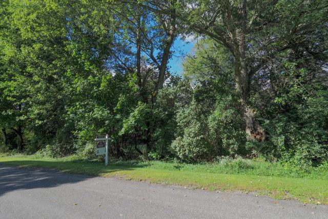 lot 28 Latgale Road, Three Rivers, MI 49093 (MLS #18046493) :: Deb Stevenson Group - Greenridge Realty