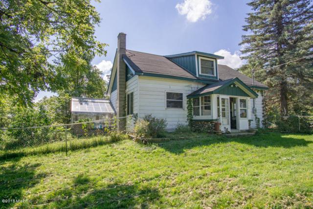 8060 E 18 Mile Road, Reed City, MI 49677 (MLS #18047036) :: Matt Mulder Home Selling Team
