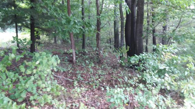 Lot 26 Sable Point Drive, Shelby, MI 49455 (MLS #18048692) :: Deb Stevenson Group - Greenridge Realty