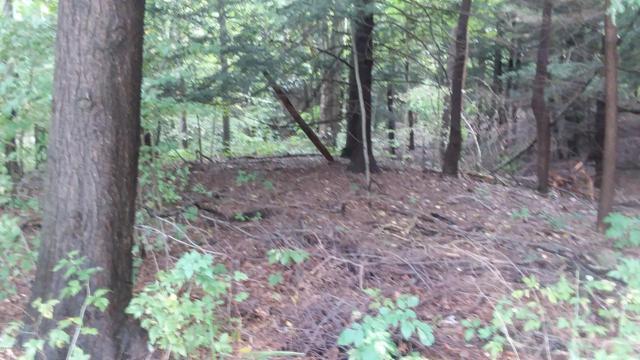 Lot 28 Sable Point Drive, Shelby, MI 49455 (MLS #18048694) :: Deb Stevenson Group - Greenridge Realty