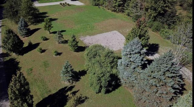 7130 Suequehanna Lane, Fennville, MI 49408 (MLS #18049290) :: Carlson Realtors & Development