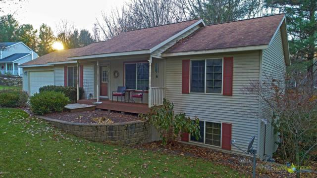 7036 Timber View Drive, Greenville, MI 48838 (MLS #18049852) :: Deb Stevenson Group - Greenridge Realty