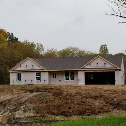 17017 Trenton Avenue, Cedar Springs, MI 49319 (MLS #18050042) :: Carlson Realtors & Development