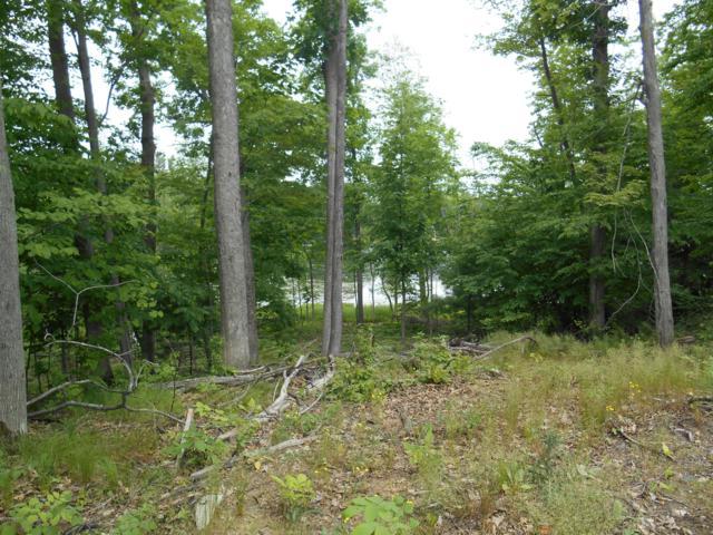 W Pickerel Pointe #7, Newaygo, MI 49337 (MLS #18050273) :: Deb Stevenson Group - Greenridge Realty