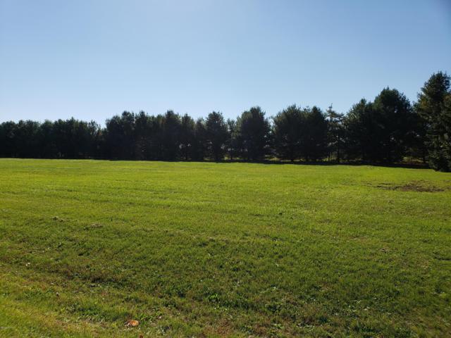 Lot 9 Woodside Lane, Three Rivers, MI 49093 (MLS #18050934) :: Carlson Realtors & Development
