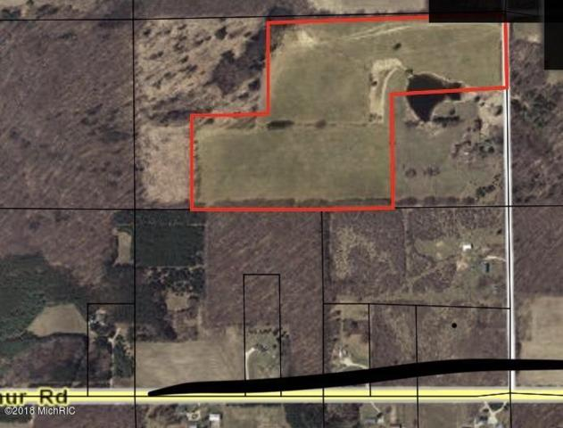 20th Ave Vacant Land, Remus, MI 49340 (MLS #18051051) :: JH Realty Partners
