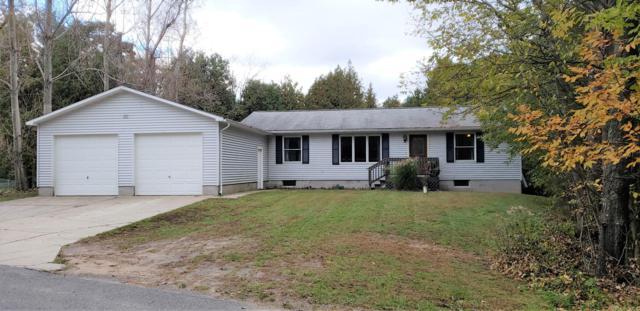 1181 Kristie Lane, Ludington, MI 49431 (MLS #18052036) :: Matt Mulder Home Selling Team