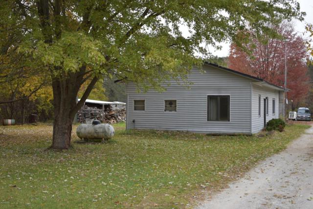 2886 N Luce Avenue, White Cloud, MI 49349 (MLS #18052687) :: Deb Stevenson Group - Greenridge Realty