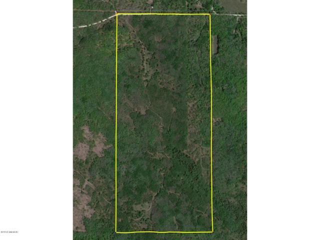 V/L-278.92 Acres 7 Mile Road, Evart, MI 49631 (MLS #18052771) :: Deb Stevenson Group - Greenridge Realty