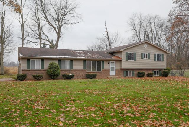 58536 W Greenfield Court, Three Rivers, MI 49093 (MLS #18055734) :: Matt Mulder Home Selling Team