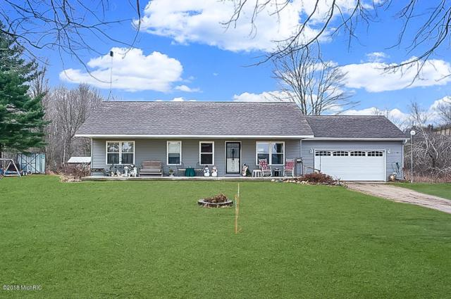 5205 N Bailey Road, Coral, MI 49322 (MLS #18059170) :: Deb Stevenson Group - Greenridge Realty