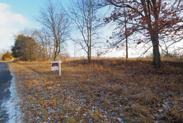 V/L 20 Mile Road, Marshall, MI 49068 (MLS #18059193) :: JH Realty Partners